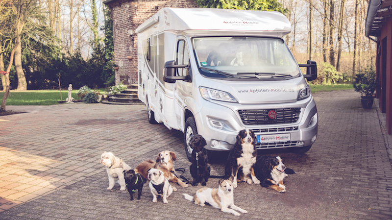 Wohnmobil mieten mit Hund – Der DogLiner